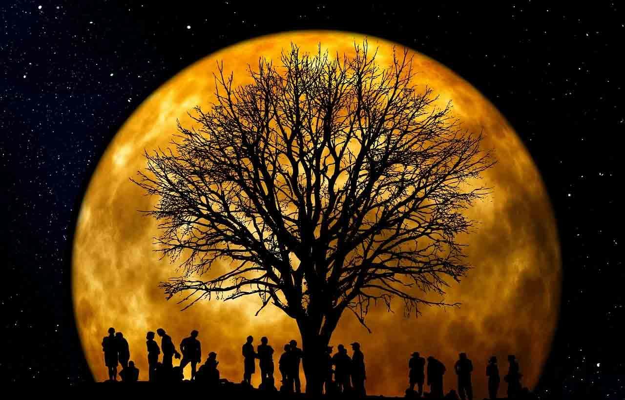 Fases da lua: qual a melhor para o amor, cortar cabelo e começar dieta?