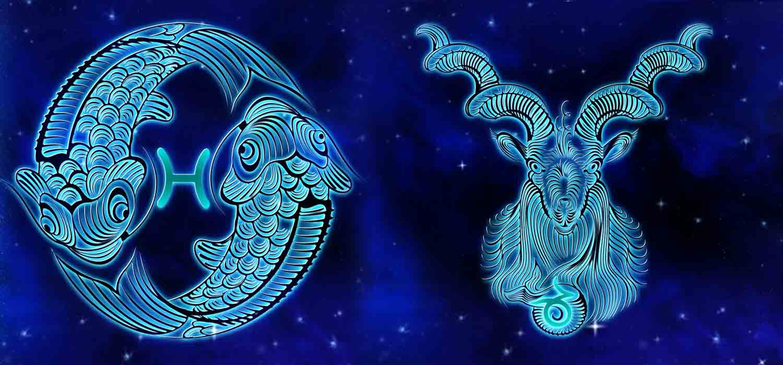 Combinação de signos – Peixes e Capricórnio . Foto: Pixabay