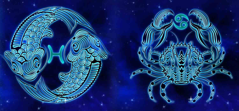 Combinação de signos – Peixes e Câncer. Foto: Pixabay