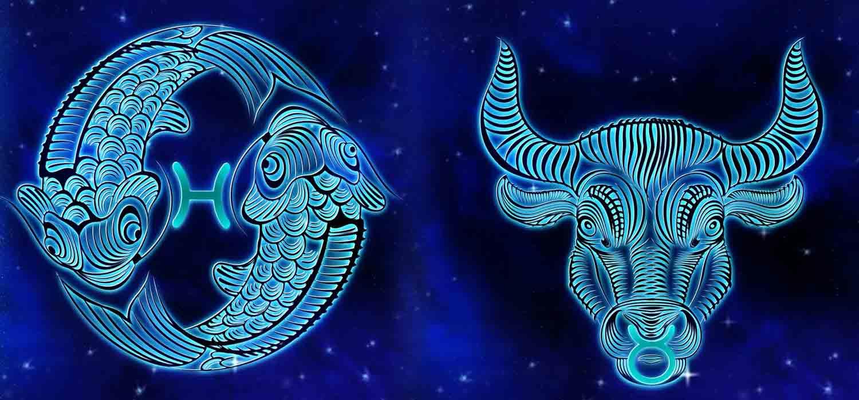 Combinação de signos – Peixes e Touro. Foto: Pixabay